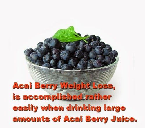 Acai Berry Weight Loss - Achieve Weight Loss With Acai Berry: Acai Berry Weight Loss, is accomplished rather easily when drinking large amounts of Acai Berry Juice. - See more at: http://molium.blogspot.com/2014/01/acai-berry-weight-loss-achieve-weight.html#sthash.eUZbIy8A.dpuf