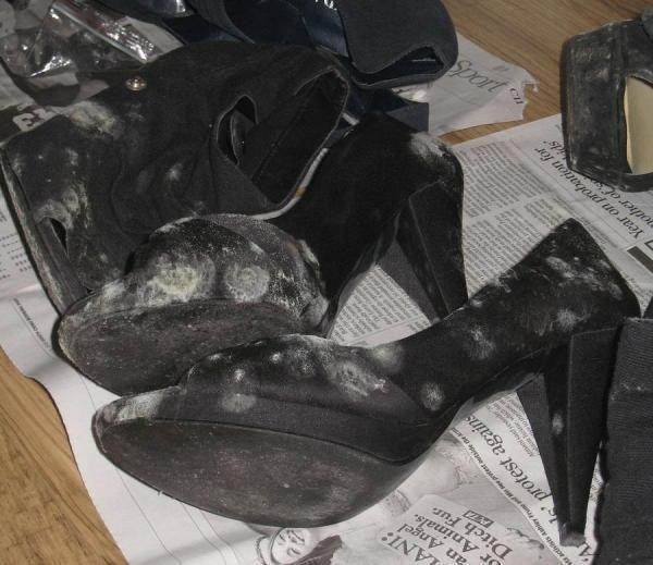 Como tirar manchas de mofo dos sapatos