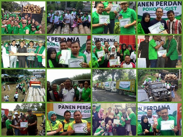 Gallery Photo ~ GREEN WARRIOR INDONESIA