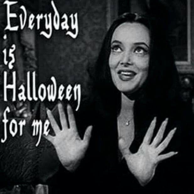 560 best All Hallows Eve Me!!!!! images on Pinterest | Holidays ...