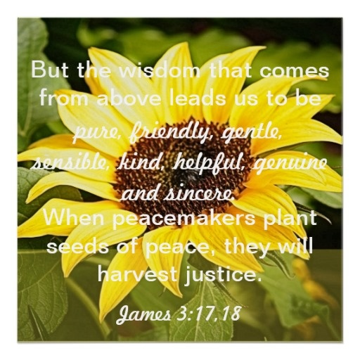 The Harvest of Justice is sown in Peace Essay