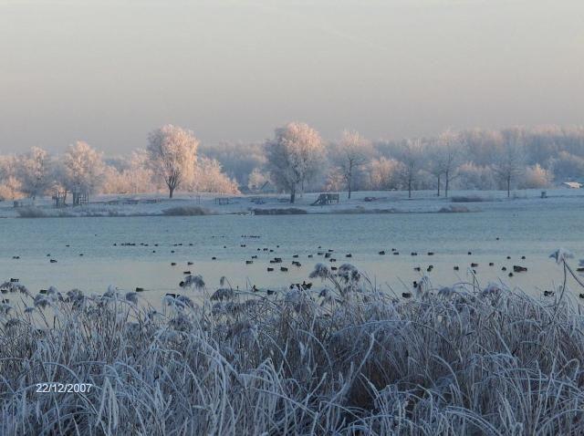 Villa Westend - winter