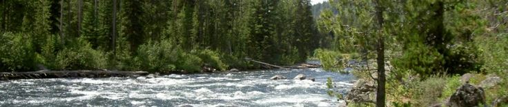 Pre and Post-Conception | The River to Recovery