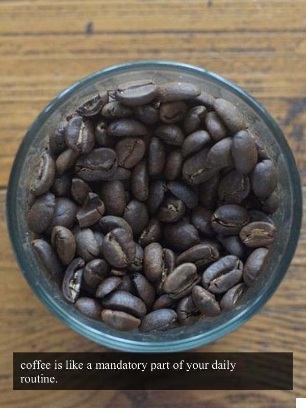 Get This Now Top Coffee Roasters Greenmountain Coffee Starbucks Coffee Beans Coffee Recipes Gourmet Coffee