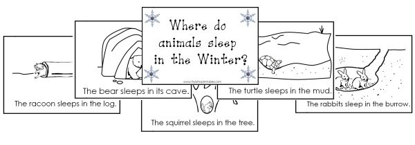 Itsy Bitsy Learners Animals In Winter Printables