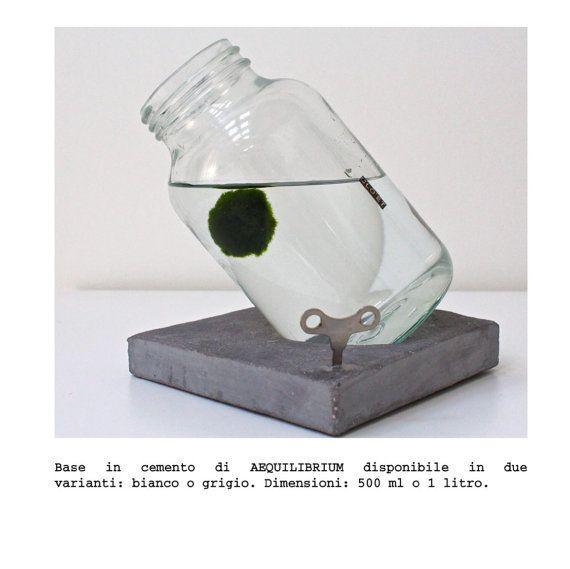 AEQUILIBRIUM by Clo'eT design 1litro  MARIMO 10 anni di CloeT