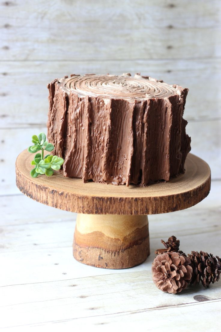 Tree stump cake. Perfect for lumberjack or woodland birthday party!- could decorate outside with Flakes