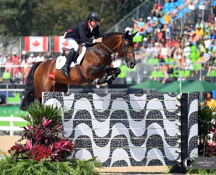 Nick Skelton and Big Star     2016 Rio Olympic Games - Team Show Jumping Day 2 Photos & Video | The Chronicle of the Horse