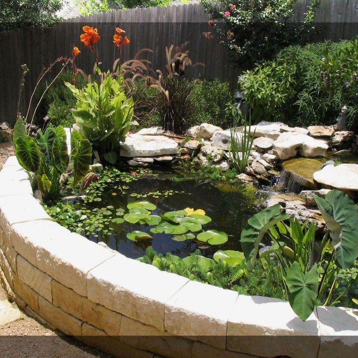 Ponds Backyard, Water Features In The