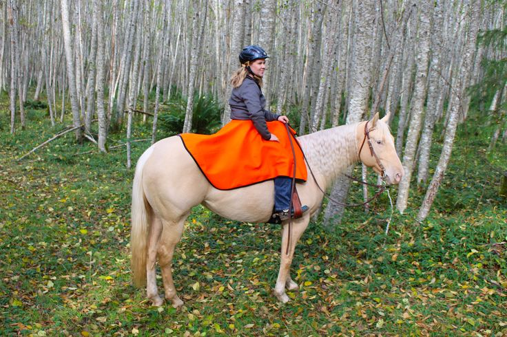 Another great picture of Laurie and Bailey showing off their warm High Vis saddle skirt!   #horses #horseaddict #horseriding #trailriding