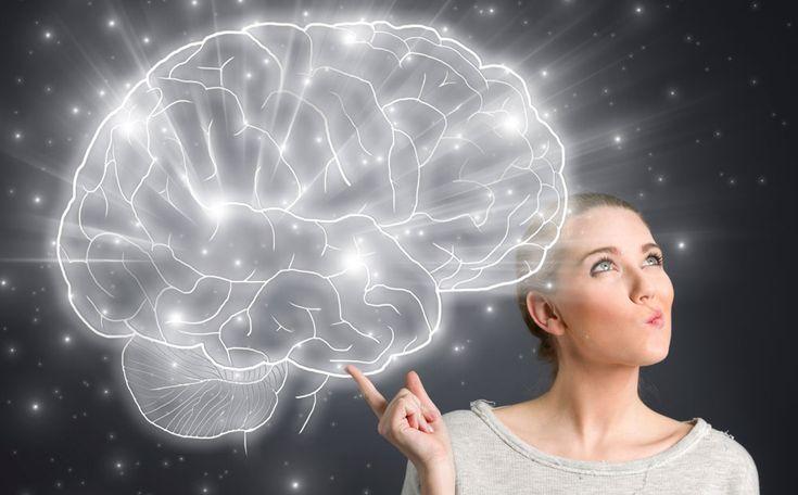 Hoe houd je je hersenen gezond? Hersenexperts Erik Scherder en Dick Swaab geven zes adviezen voor een brein in topconditie.