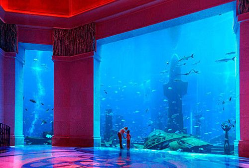 34 best Atlantis, the Palm Hotel in Dubai images on