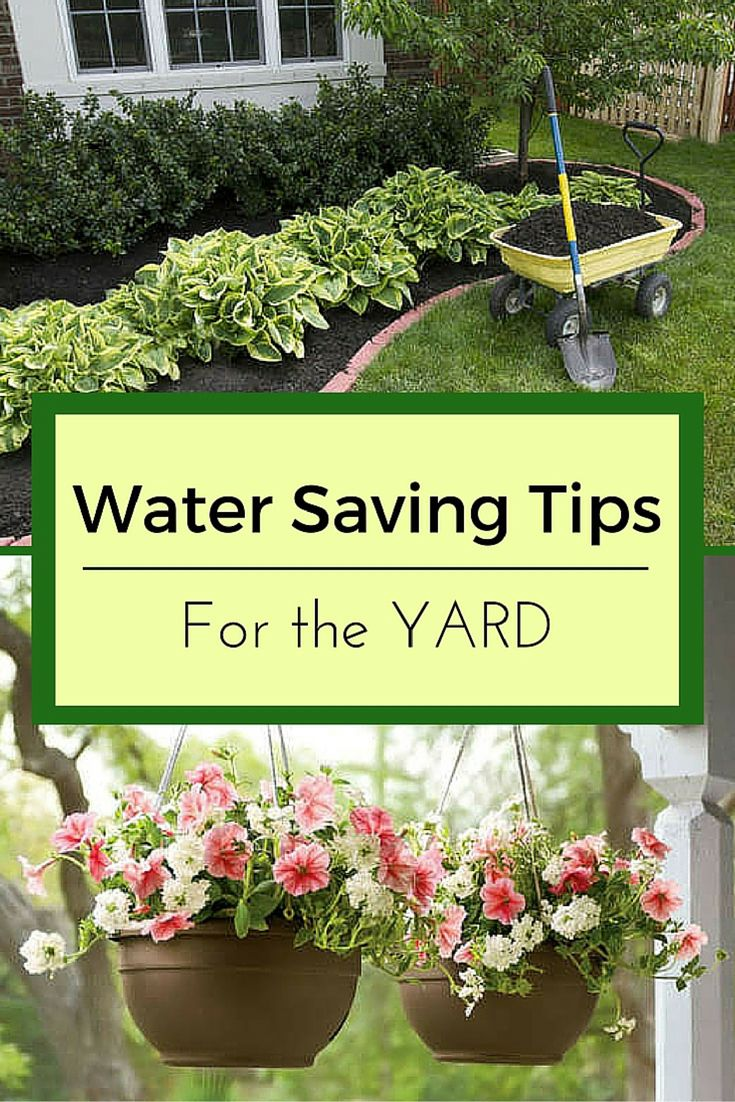 These water saving strategies can get you through droughts and restrictions. Follow a few of these conservation tips, and you can still have a dream garden while saving water in your yard.