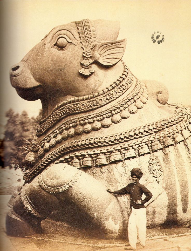 There is a very large Nandi (bull), mount of Shiva, about 200 metres (660 ft) away from the temple which is carved from a single block of stone, which is said to be one of the largest of its type in the world.