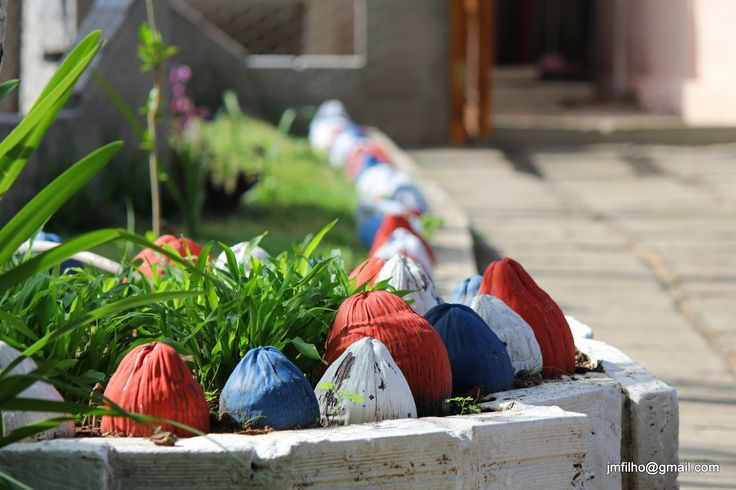 colored coconuts | Flickr - Photo Sharing!