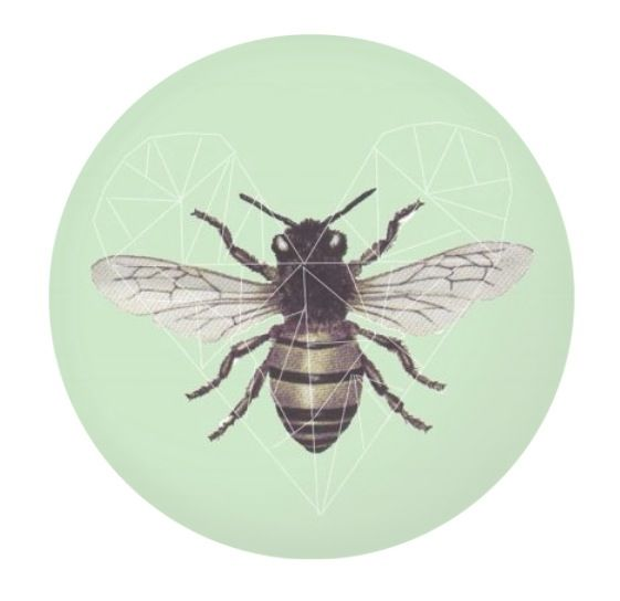 Bee design in lots of fun gift ideas, pillows, phone cases, mug and much more check out http://www.artrookie.co.uk/riasiobhan