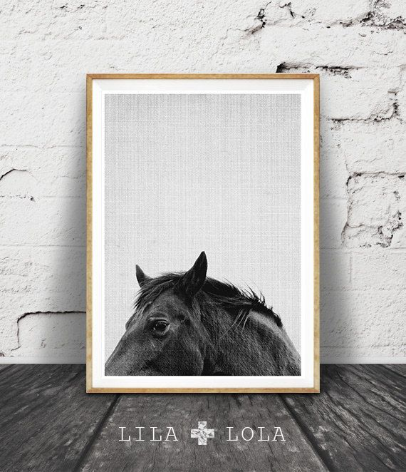 Horse Print, Horse Photo, Black and White Horse Photography Print, Modern South West Decor, Western, Equestrian Art Prints, Abstract Horse