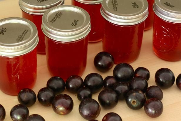 Use the sweet juice of thick-skinned Muscadine grapes to make succulent jelly with just the right bite