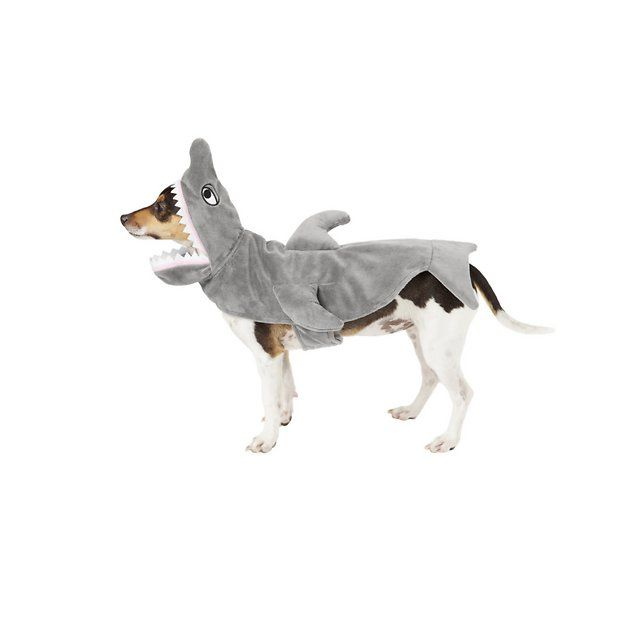Buy Frisco Shark Dog Cat Costume Small At Chewy Com Free