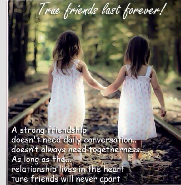Friends Forever Funny Quotes: 20 Best Friend Funny Quotes For Your Cute Friendship
