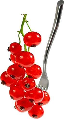Comprar grosellas en www.jalarico.com