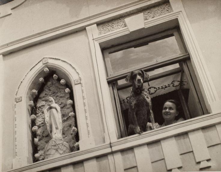 Woman and Dog in Window \ Josef Ehm c1935