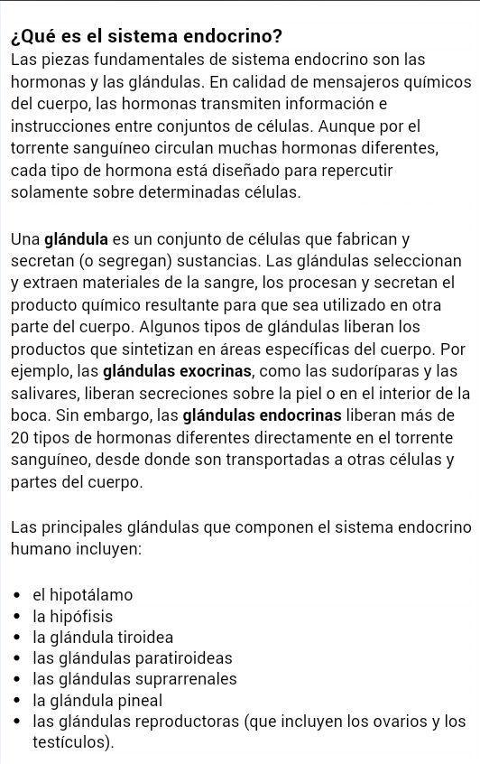 Exolicacion Sistema Endocrino