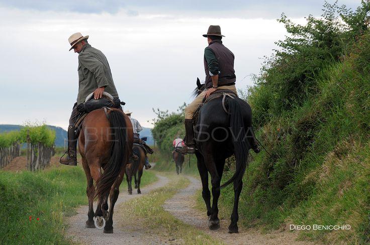 Cavallo Avventura Programma Trek Agosto