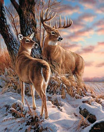 Terry Redlin Wildlife Prints | Twilight Escapade Print SET by Rosemary Millette | Wild Wings
