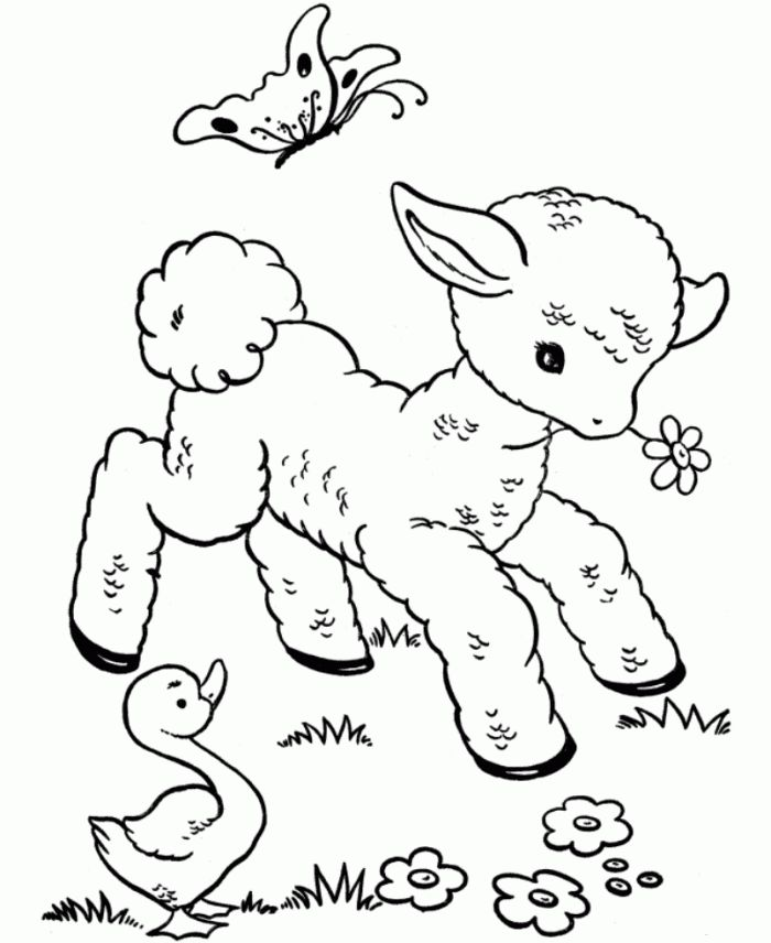Cute Spring Duck Coloring Pages - Animal Coloring Pages of ...