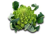 Legumes de Antigamente - Couve-Flor Romanesco - Catálogo de Produtos - FIEL - Importação e Exportação de Frutas e Legumes