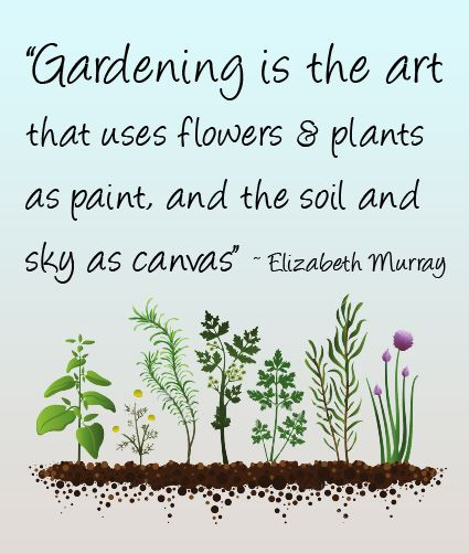 Garden Quotes Adorable 31 Best Gardening Quotes Images On Pinterest  Garden Art Vegetable