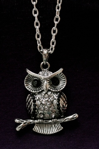 """That's my """"dear"""" owl necklace ;)"""