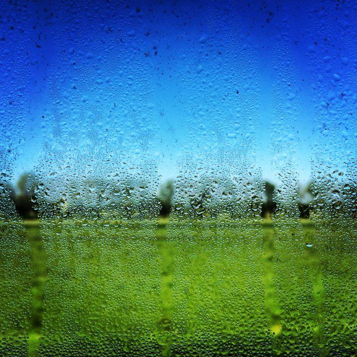 rainy day #netherlands #window