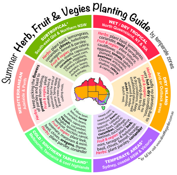 What to PLANT Now: Summer Herb, Fruit & Vegies Planting Guide by temperate zones Australia