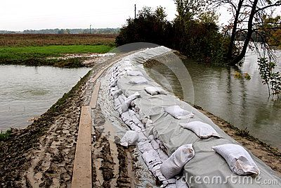 Preparing for flood with sandbags flood protection on a muddy levy with walking wooden boards between river and local lake on a rainy day.