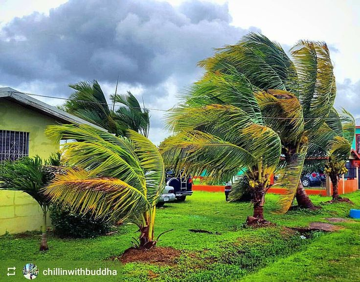 http://OkGoBelize.com #Follow @chillinwithbuddha: #Hurricane Earl makes landfall in #Belize - #Hattieville #ILoveBelize #Travel #CentralAmerica #Caribbean