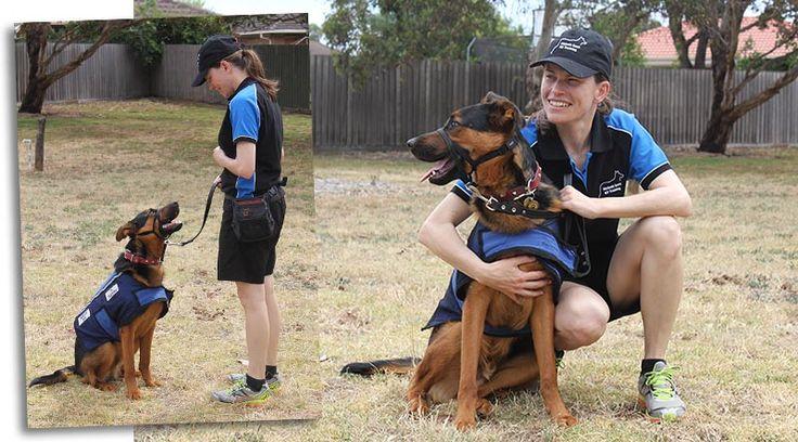 K9 Training – motivating your dog –with Melanie Scott