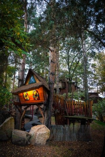 Kulturinsel Einsiedel: the treehouse hotel at night