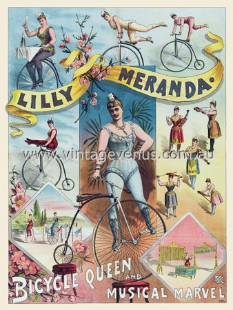 Bikes Queens Lilly Meranda Bicycle Queen