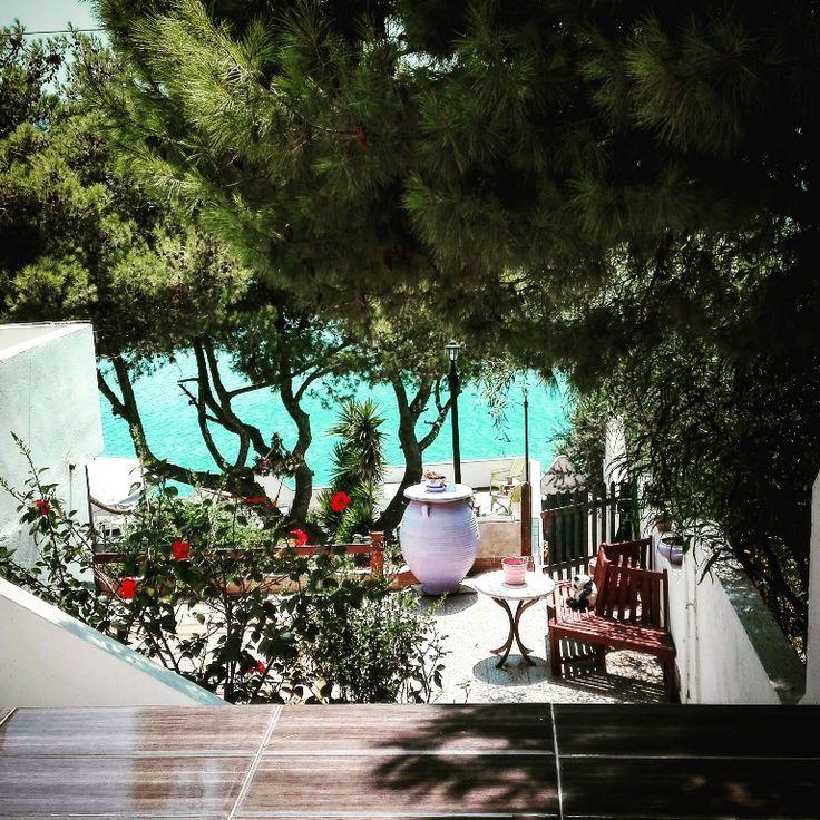 Наслаждайтесь кофе в наших садах с видом на море..Απολαύστε τον καφέ σας με θέα τη θάλασσα.http://buff.ly/2cTNOgi