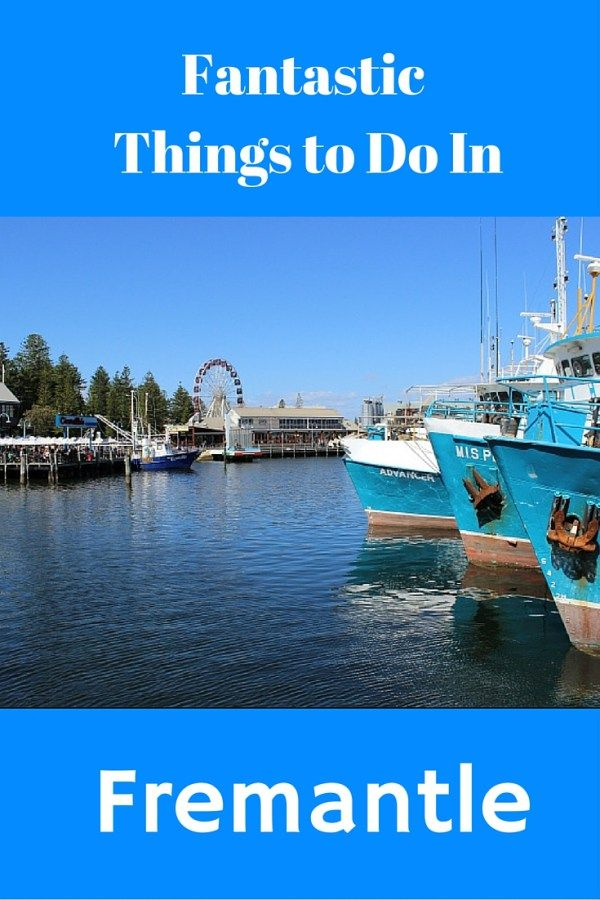 Fun Things to do in Fremantle - Lifestyle Fifty