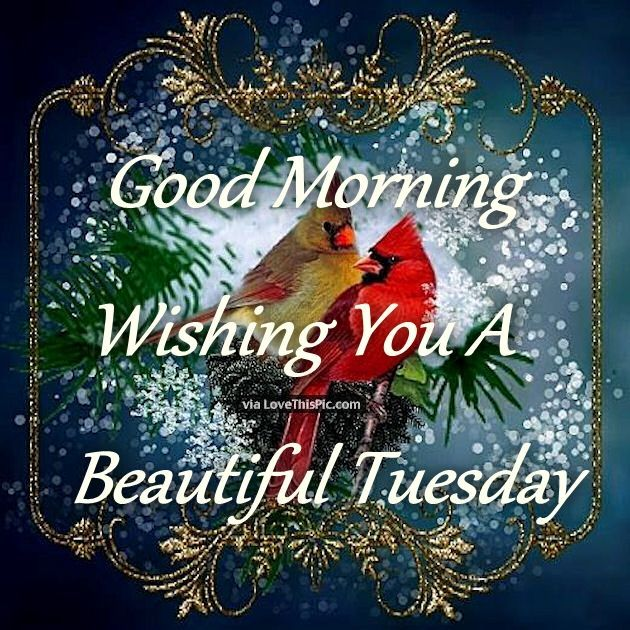 Good Morning Wishing You A Beautiful Tuesday