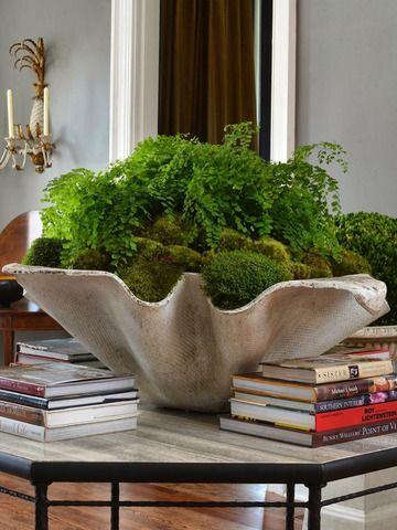 Bunny Williams | clam + moss + fern