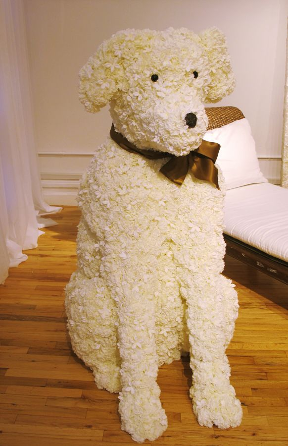 since henry can't come, maybe we'll do a flower dog of him ... awesome!