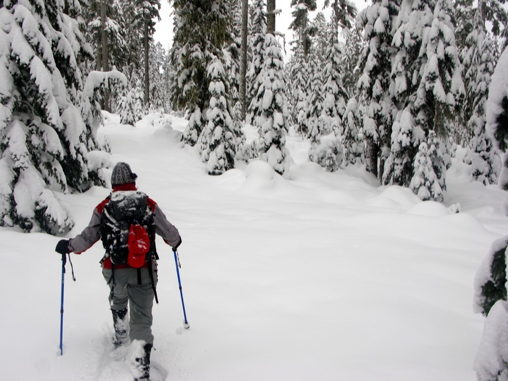 meet snow shoe singles Best 2018 singles cruisescruise companies have stepped up guided snowshoe adventures in wa (because you will sink into the snow even.