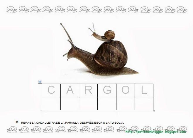 CARGOL projecte P3 - petitmón 1 - Álbumes web de Picasa