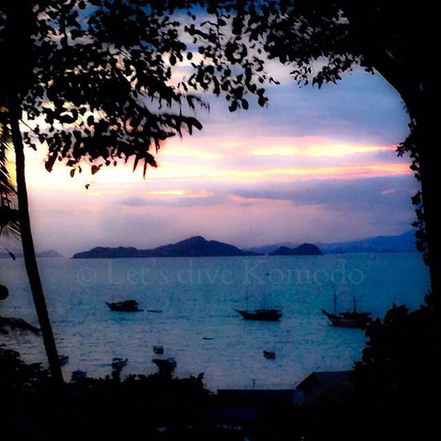 Another dream sunset, have a great evening everyone! #komodo #labuanbajo #dream #sunset #view #backyard #beautiful #colors #ocean #bay #boats #happy #favorite #time #lovemyjob #photography #photooftheday #scubadiving #divecenter #travel #holiday #backpacking #explore #bucketlist #adventure #exploremore #instapic #instadaily