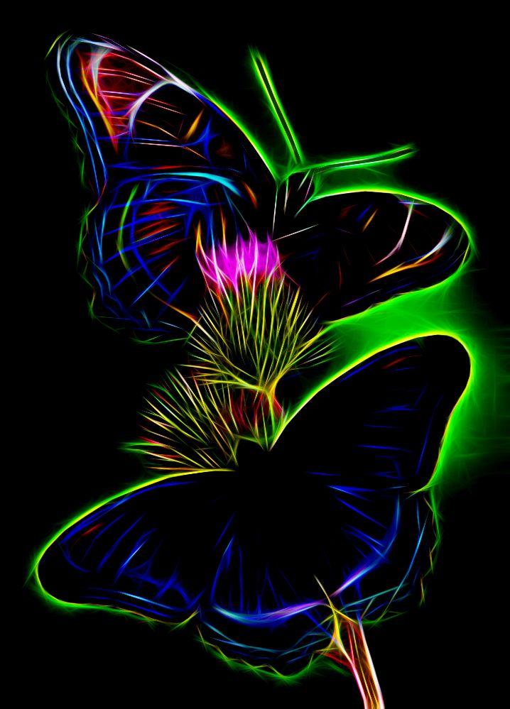 Butterflies Fractal - Akvis Neon