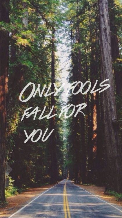 Fools || Troye Sivan All credit to Tumblr